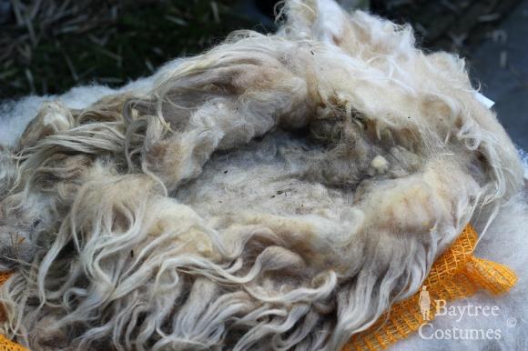 Wool sides